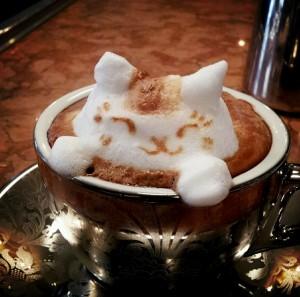 kave_koffein_reggel