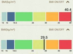 BMI_index_valodi_fogyas