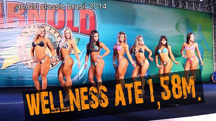wellness_kategoria