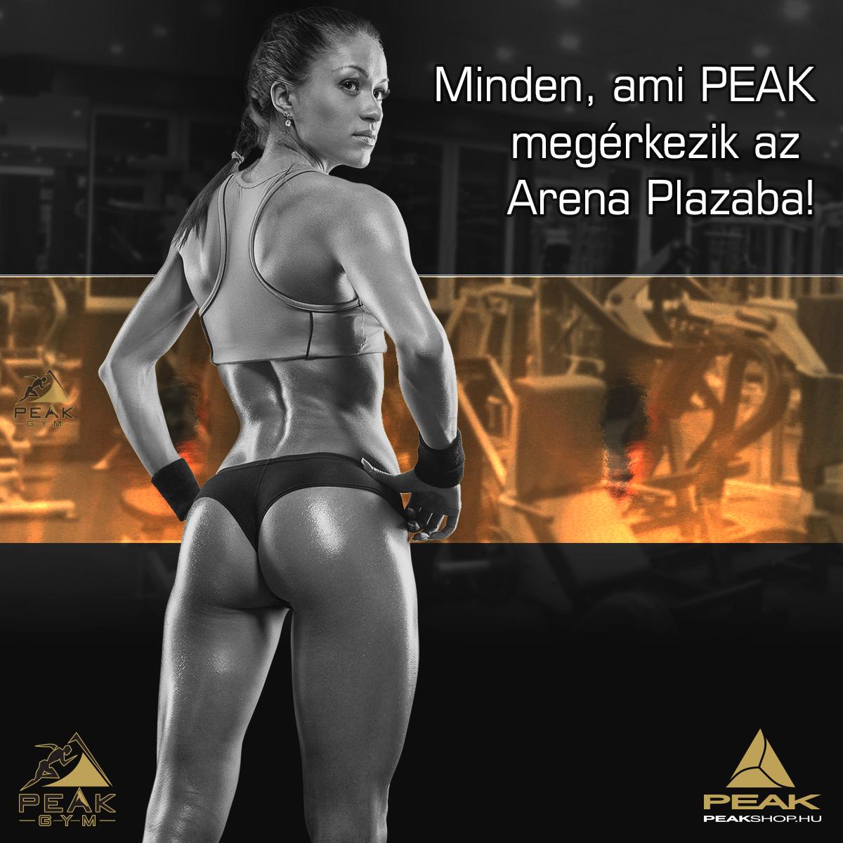 peak-gym-arena