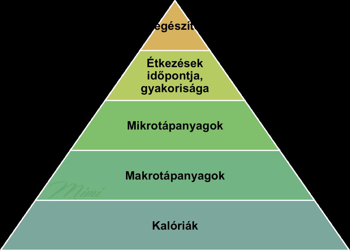 taplalkozasi-prioritasok-piramisa