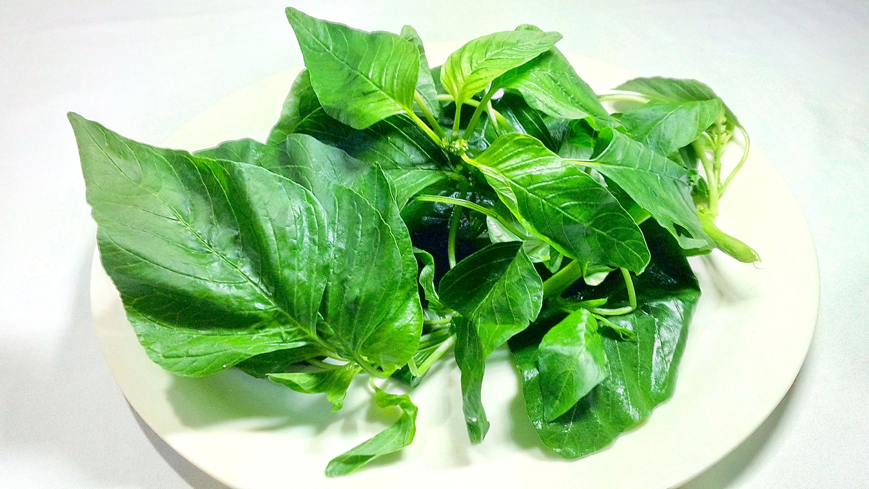 amarant-kalciumforras