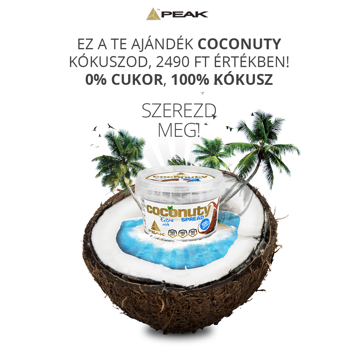 coconuty facebook