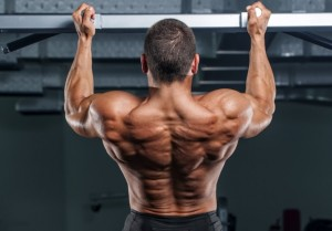 back-muscles-2