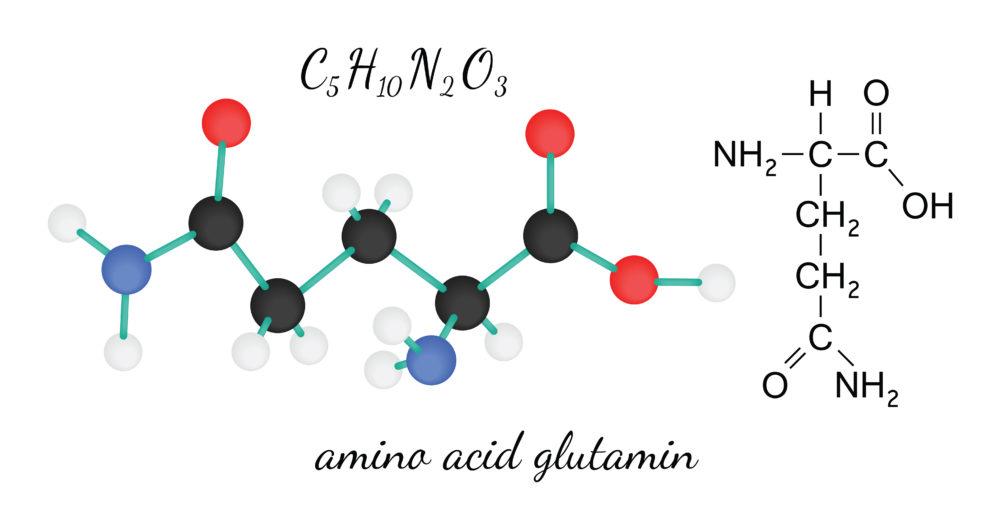 glutamin_aminosav