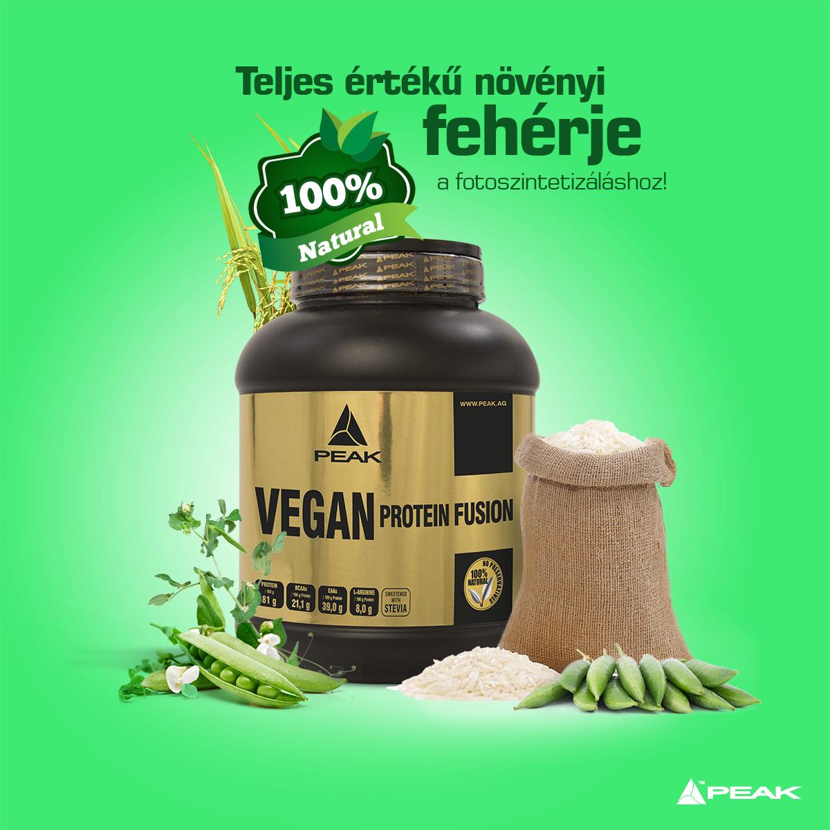 vegan-protein