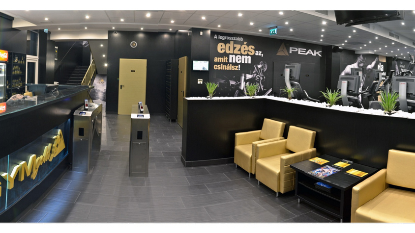 peak-gym-gold-es-arena