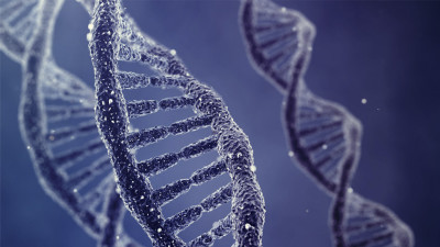 10 dolog, ami nem a genetikán múlik