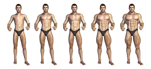 Chart depicting a bodybuilder gaining muscle mass over time - 3D render.