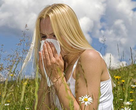 Allergia elleni