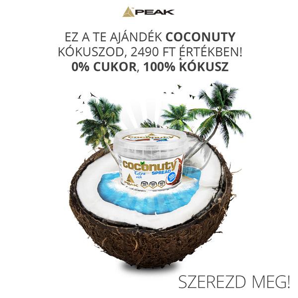 coconuty wp